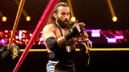 NXT 245 Photo 10