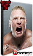 Brock Lesnar - WWE 16x20 Canvas Print