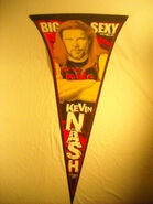 WCW-NWO Kevin Nash Pennant