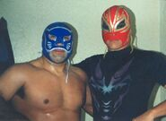 Blue Panther 10