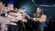 WrestleMania Revenge Tour 2016 - Belfast.4
