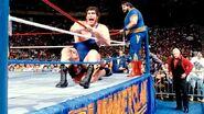 SummerSlam 1989-21