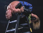 Royal Rumble 2001.2