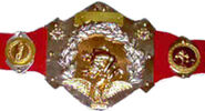 Original WWF IC Belt