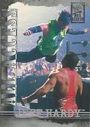 2002 WWF All Access (Fleer) Jeff Hardy 10