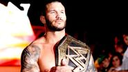 WWE World Tour 2013 - Cardiff.24