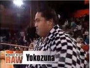 Yokozuna 1-11-93 Raw