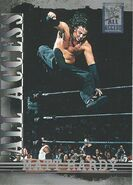 2002 WWF All Access (Fleer) Matt Hardy 48