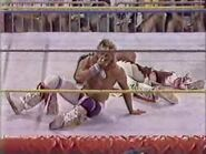 Great American Bash 1991.00015