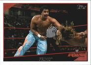 2009 WWE (Topps) Primo 6