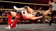 11-20-14 NXT 11