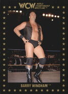 1991 WCW Collectible Trading Cards (Championship Marketing) Barry WIndham 17