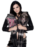 Paige nxt and wwe divas champion photomontage by wwephotomontagepng-d7dph1q