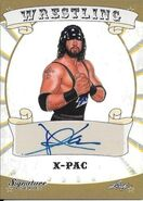 2016 Leaf Signature Series Wrestling X-Pac 90