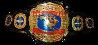 Nwa-north-american-heavyweight-title