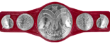 WWE Raw Tag Team Championship