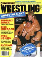 Championship Wrestling - August 1987