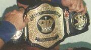 Smokey Mountain Champion