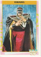1995 WWF Wrestling Trading Cards (Merlin) Kwang 41