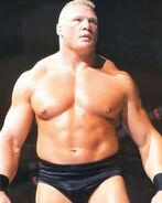 Brock Lesnar2