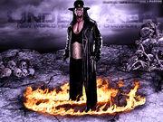Undertaker-wallpaper-800x600