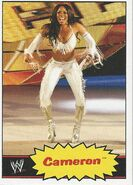 2012 WWE Heritage Trading Cards Cameron 9