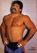 Rick Steiner 1