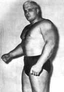 Ole Anderson 2