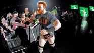 WrestleMania Revenge Tour 2014 - Belfast.6