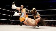 11-9-14 WWE Leeds 13