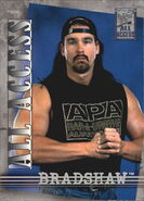 2002 WWF All Access (Fleer) Bradshaw 17