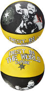 CM Punk Best In The World Basketball