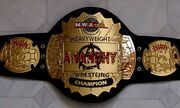 NWA Anarchy Champion