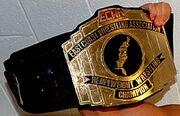 ECWA Mid-Atlantic Champion