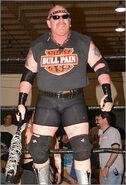 Bull Pain 1