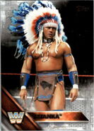 2016 WWE (Topps) Then, Now, Forever Tatanka 196