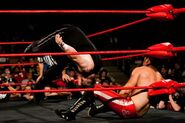 ROH SITS 2012 23