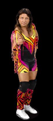 Marty Jannetty | Wrestlepedia Wiki | Fandom powered by Wikia