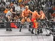WCW Sin.00040