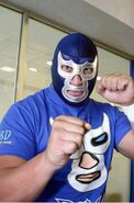 Blue Demon Jr. 1