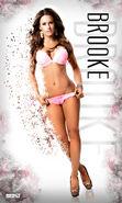 Brooke Tessmacher Banner 2.0