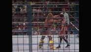 SummerSlam 1990.00057