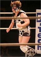 Bullfight Sora