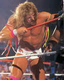 Ultimate Warrior23