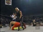 November 20, 1995 Monday Nitro.00017