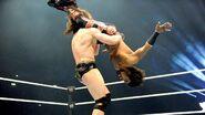 WWE WrestleMania Revenge Tour 2014 - Berlin.6