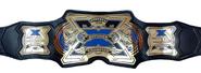 New TNA X division