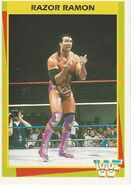 1995 WWF Wrestling Trading Cards (Merlin) Razor Ramon 79