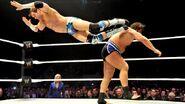 WWE WrestleMania Revenge Tour 2014 - Strasbourg.7