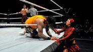 WrestleMania Revenge Tour 2015 - Nottingham.7